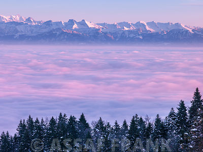 Mont Blanc above clouds, The Alps, France