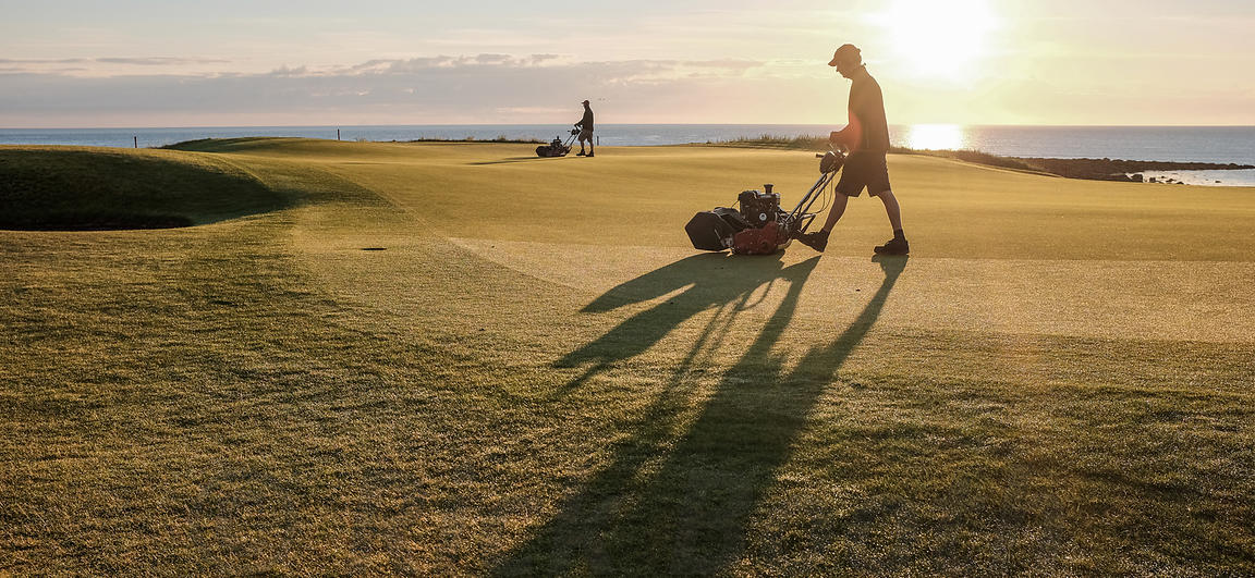 5:30am, Kingsbarns Fife. Greenkeepers make final cuts to the 14th green ahead of the final round of the Ricoh Womens British ...
