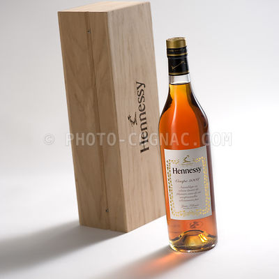 Hennessy Coupe 2008 - Part des Anges