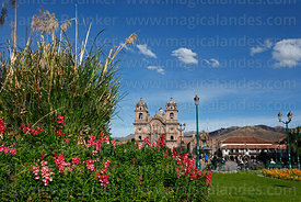 Pampas grass, flowers and La Compañia de Jesus Jesuit church, Plaza de Armas, Cusco, Peru