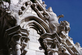 Gargoyles of Notre Dame Cathedral, Paris