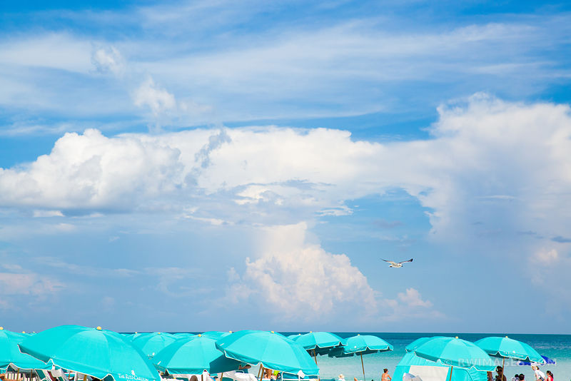 GREEN BEACH UMBRELLAS MIAMI BEACH FLORIDA
