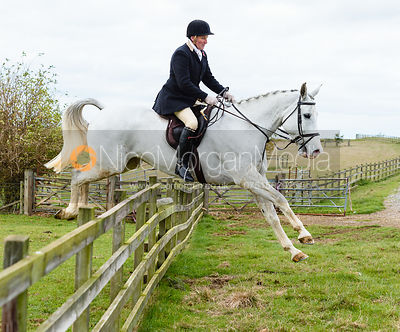 Dr. Willie Reardon jumping a hunt jump at Stone Lodge. The Cottesmore Hunt at Tilton