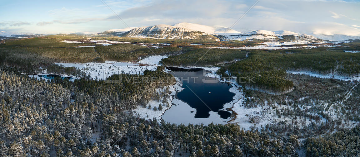 Aerial view over Uath Lochans and Scots pine (Pinus sylvestris) forest, Cairngorms National Park, Scotland, UK, January.