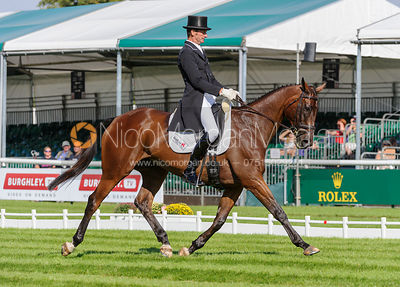 Mark Todd and RAVENSTAR - dressage phase,  Land Rover Burghley Horse Trials, 5th September 2013.