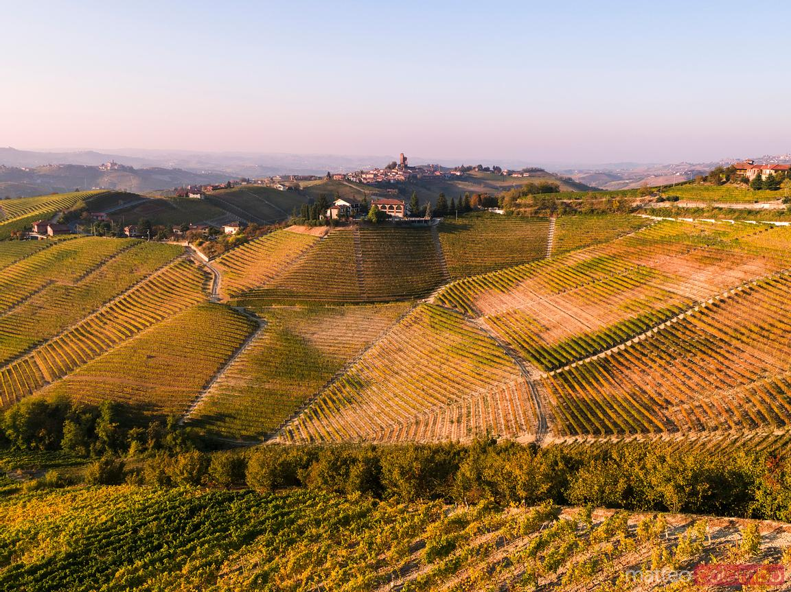 Aerial view over Le Langhe vineyards, Piedmont, Italy