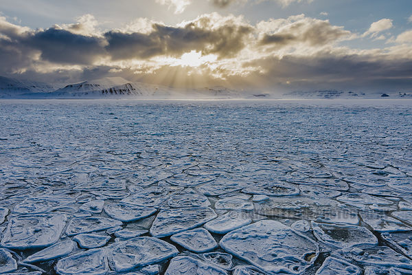 Pancake ice under the midnight sun in Svalbard