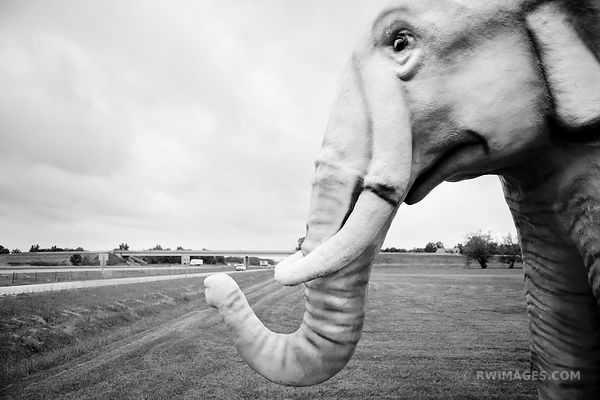 THE PINK ELEPHANT ROUTE 66 LIVINGSTONE ILLINOIS BLACK AND WHITE