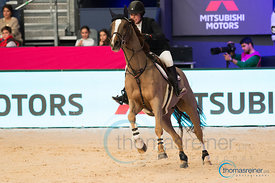 MITSUBISHI TROPHY - Madrid Horse Week 2017