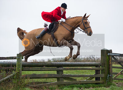 Nicholas Leeming jumping fences at Stone Lodge Farm - The Cottesmore at John O'Gaunt 24/11/12