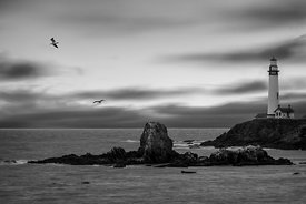 Pigeon Point Revisited (B&W)