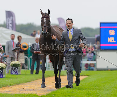 Jonathan Paget and CLIFTON PROMISE - The first vets inspection (trot up),  Land Rover Burghley Horse Trials, 3rd September 2014.