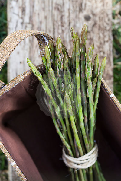 Mallorcan grown wild asparagus in woven linen basket, with rustic wood background