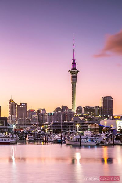 Auckland financial district and harbour at dawn, New Zealand