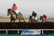 RA Hunt Point to Point 25 Jan 14