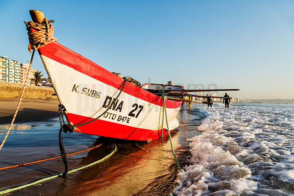 Fishing Boat DNA 27