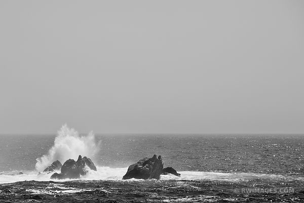PACIFIC OCEAN PARTINGTON POINT BIG SUR CALIFORNIA BLACK AND WHITE