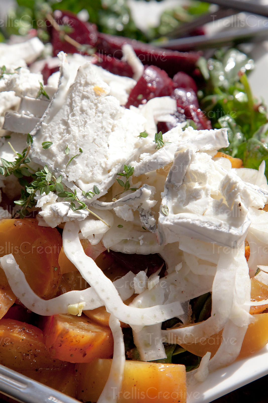 Golden and red beet salad with shaved fenel and crumbled goat cheese