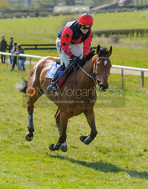 Gina Andrew (TOP SMART) - Ladies Open - The Quorn at Garthorpe