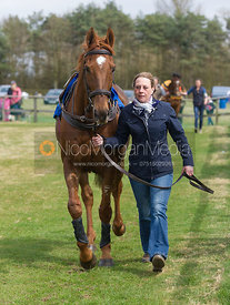 Royals Darling, Members Race - The Quorn at Garthorpe 21st April 2013