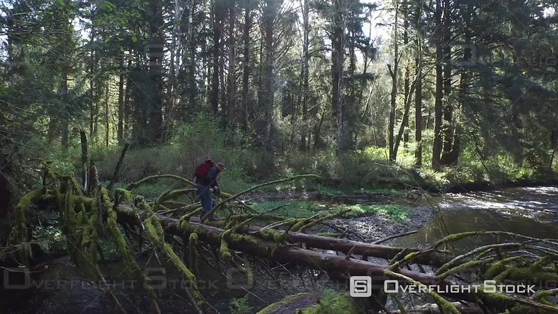 Man Taking Pictures of Stream and Forest Oregon USA Aerial Footage
