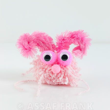 Pom pom monster on white background