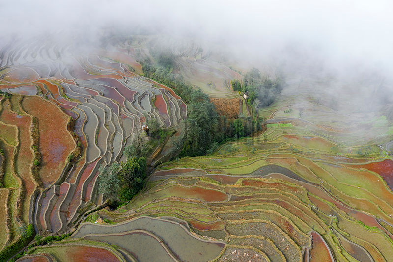 Aerial View of Duo Yi Shu Rice Paddies in the Yuanyang Region