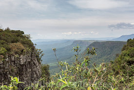 View from Gods Window, Blyde River Canyon Nature Reserve, Panorama Route , South Africa; Landscape
