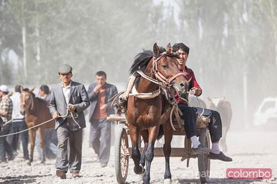 Man riding a carriage at Kashgar sunday market, China