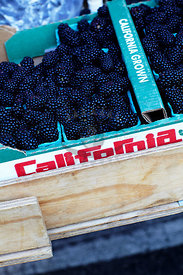 California Farmers Market