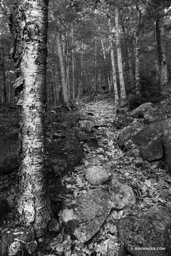 TRIAD TRAIL ACADIA NATIONAL PARK MAINE BLACK AND WHITE