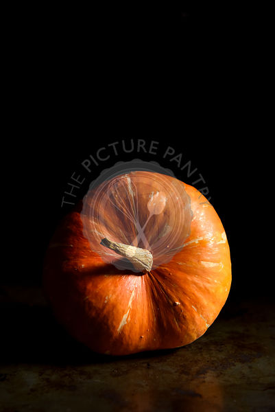 Pumpkin on a black background