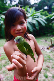 Yahua (Yaguar) girl with pet White-winged Parakeet on Amazon Peru near Iquitos