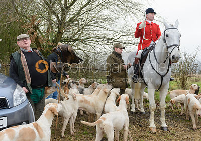 Huntsman and hounds at the meet at Town Park Farm