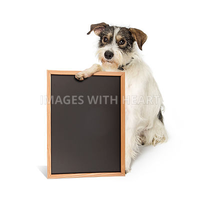Saggy Terrier Dog Holding Blank Chalkboard Sign