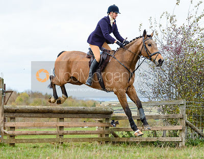 Debbie Barnes jumping a hunt jump at Stone Lodge. The Cottesmore Hunt at Tilton