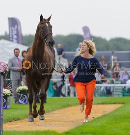 Allison Springer and ARTHUR - The first vets inspection (trot up),  Land Rover Burghley Horse Trials, 3rd September 2014.