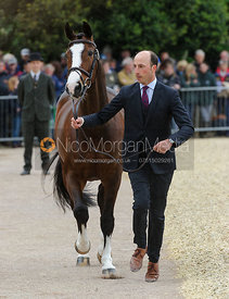 Tim Price and WESKO - First Horse Inspection, Mitsubishi Motors Badminton Horse Trials 2014