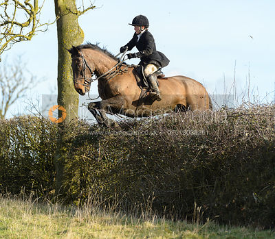 Alice Robb jumping a hedge near Ladywood - The Cottesmore at Priory Farm