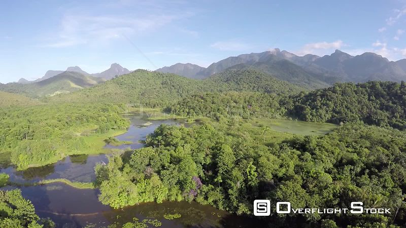 Aerial shot descending over an area of wetland in the Atlantic Forest, Reserva Ecologica de Guapiacu, Rio de Janeiro, Brazil,...