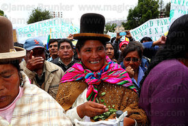 Aymara woman chewing coca leaves ( Erythroxylum coca ) at an event to celebrate Bolivia rejoining the 1961 UN Convention , La...