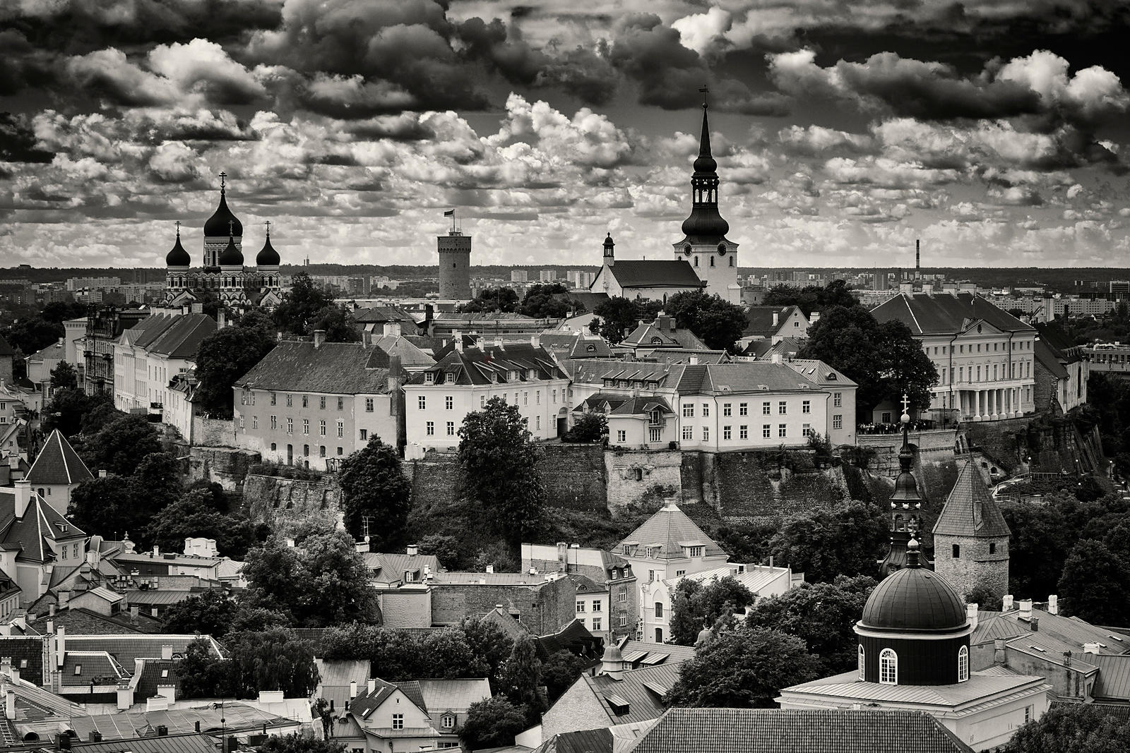 Elevated View of the City of Tallin from St Olav's Church