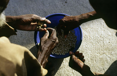 Ghana - Arigu - Asumpaheme, who is blind, works with her daughter to sort beans.