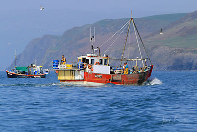 Fishing boat, Aberystwyth harbour