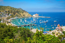 Catalina Island Avalon Harbor High Resolution Photo