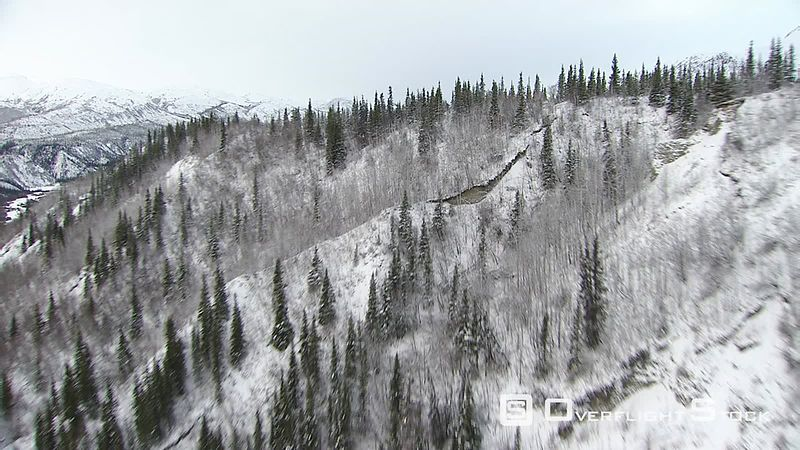 Flying over wintry forest in Alaska