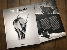 Livre_Ice_is_Black