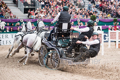 Partner Pferd Leipzig 2014 - Driving Worldcup