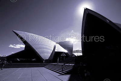 The Sydney Opera House in Monochrome