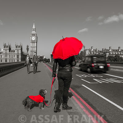 Tourist holding red umbrella standing with dog on Westminster Bridge, London, UK
